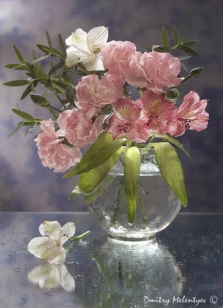 Ощущения души – Разное | OK.RU в 2020 г | Красивые розы ...