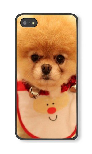iPhone 5S Case Color Works Cute Dog Christmas Black PC