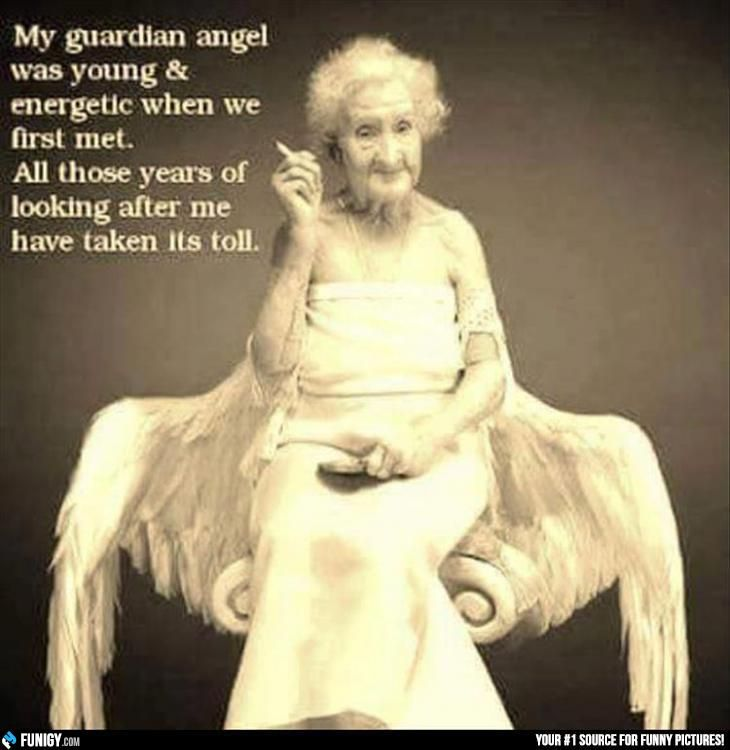 My Guarding Angel (Funny People Pictures) - #energetic # ...