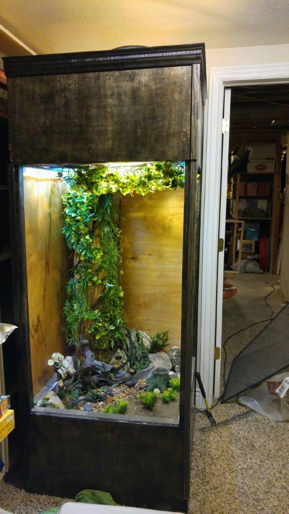 Custom Home Built Terrarium For Our Chameleon Melba Reptile