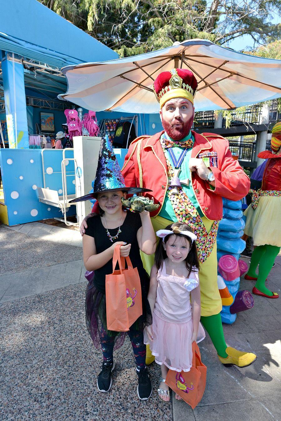 SeaWorld's Spooktacular KidFriendly Halloween Event in