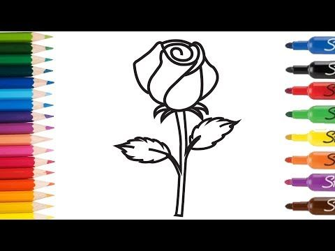How To Draw Rose Flowers Learning Rainbow Colors For Baby
