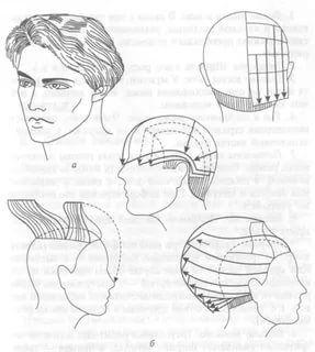Схемы стрижек с описанием для начинающих