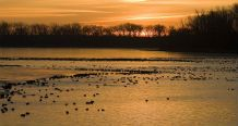 The Desoto National Wildlife Refuge Is Located Just Outside