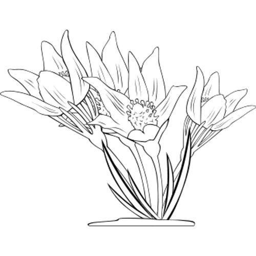 wiosenne kwiaty szablony #wiosenne #kwiaty #szablony ~ wiosenne kwiaty _ wiosenne kwiaty prace plastyczne _ wiosenne kwiaty przedszkole _ wiosenne kwiaty szablony _ wiosenne kwiaty karty pracy _ wiosenne kwiaty z papieru _ wiosenne kwiaty kolorowanki _ wiosenne kwiaty w ogrodzie