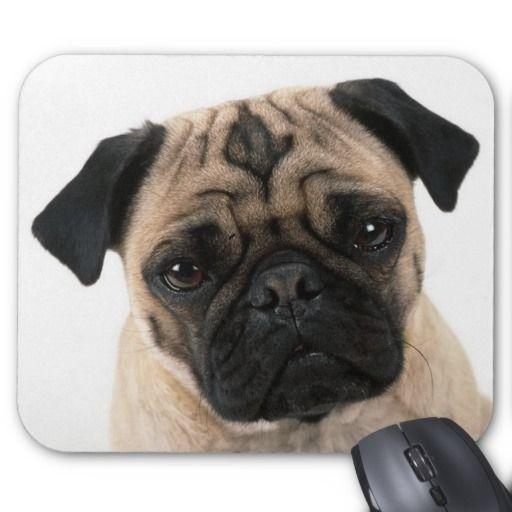 Love Pug Puppy Dog With Heart Mousepad Zazzle Com Pugs Pug