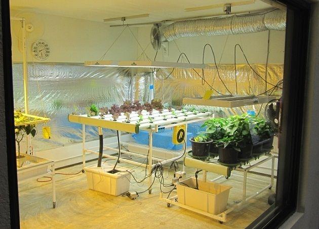 large indoor Hydroponic grow room | Hydroponics | Grow room