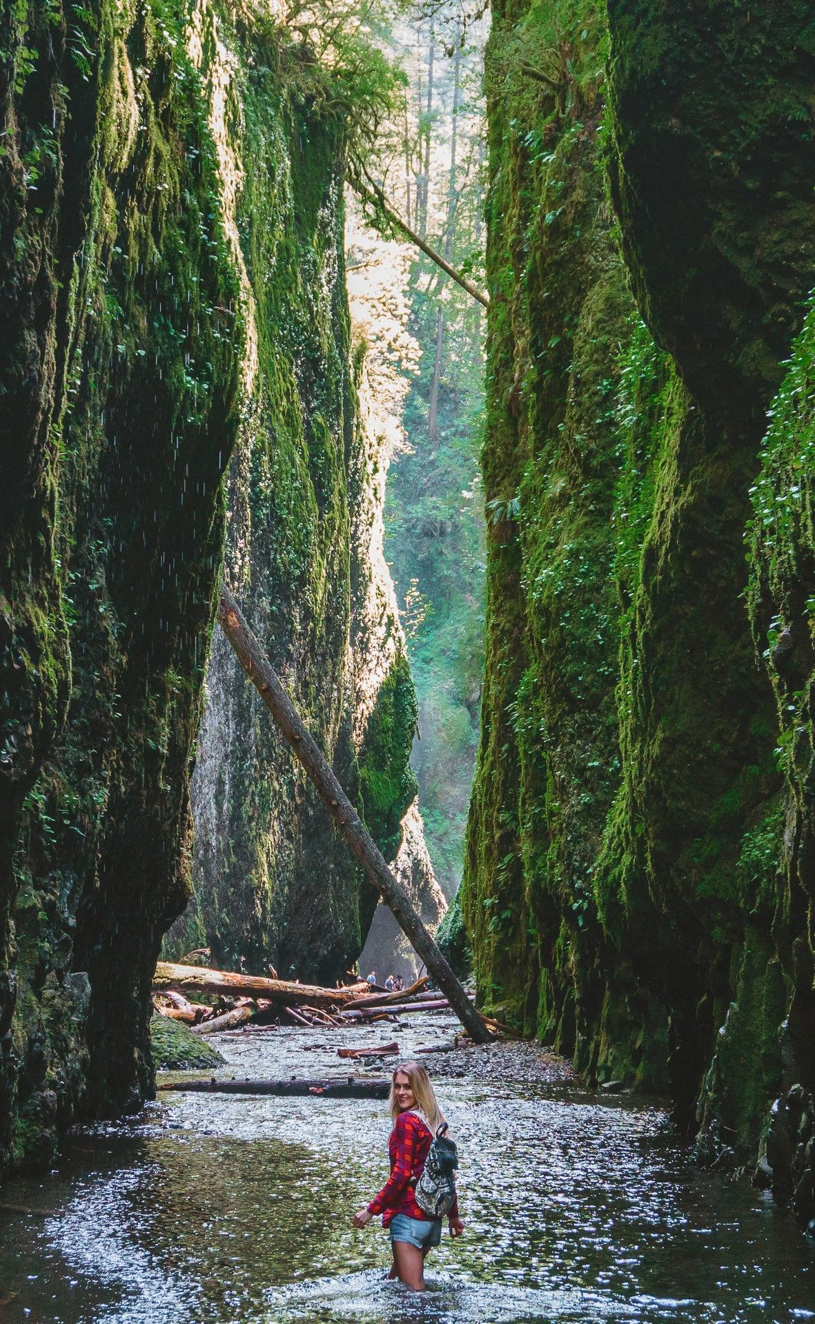 10 Reasons To Skip Iceland And Go To Oregon Oregon Travel Oregon Road Trip Cool Places To Visit