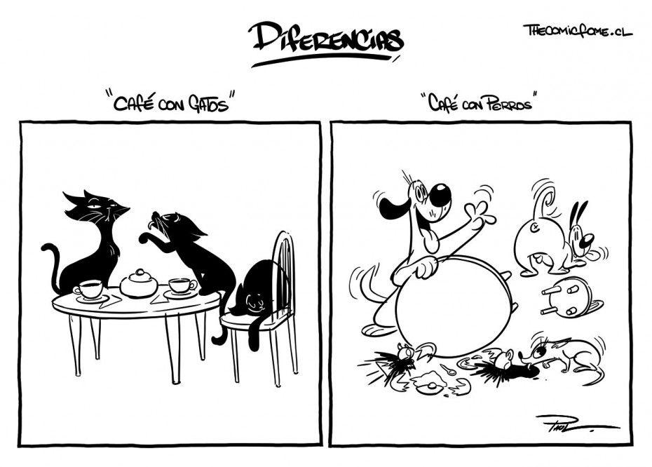 Diferencias entre gatos y perros. #humor #risa #graciosas #chistosas #divertidas