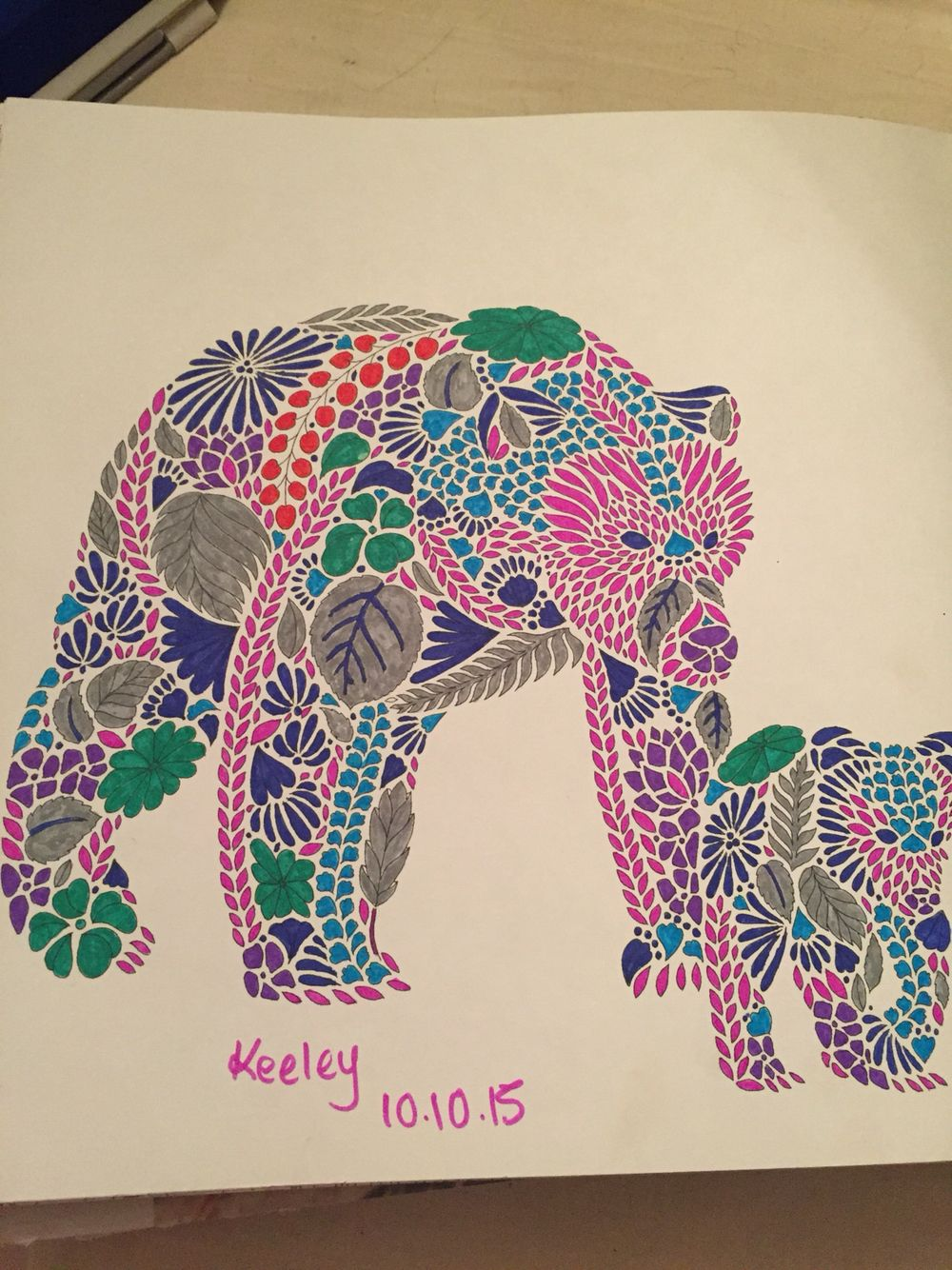 Millie Marotta Animal Kingdom Colouring Page Bears