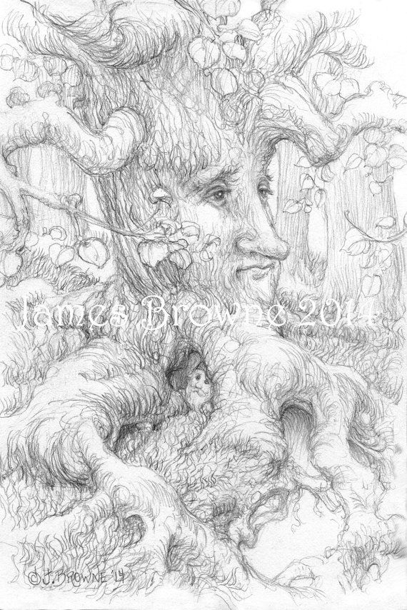 Gnome Tree Coloring Page Printable Digital Download Tree