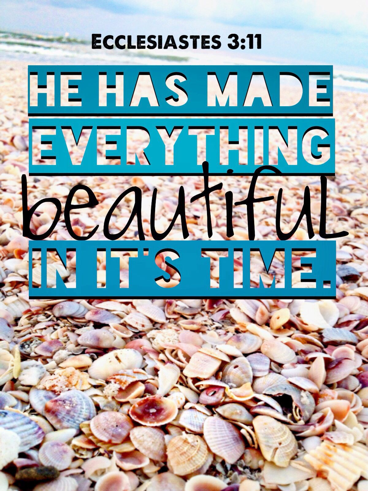 Ecclesiastes 3:11   Everything is beautiful. Bible verses. Christian quotes.  *edit is all me, photo and all