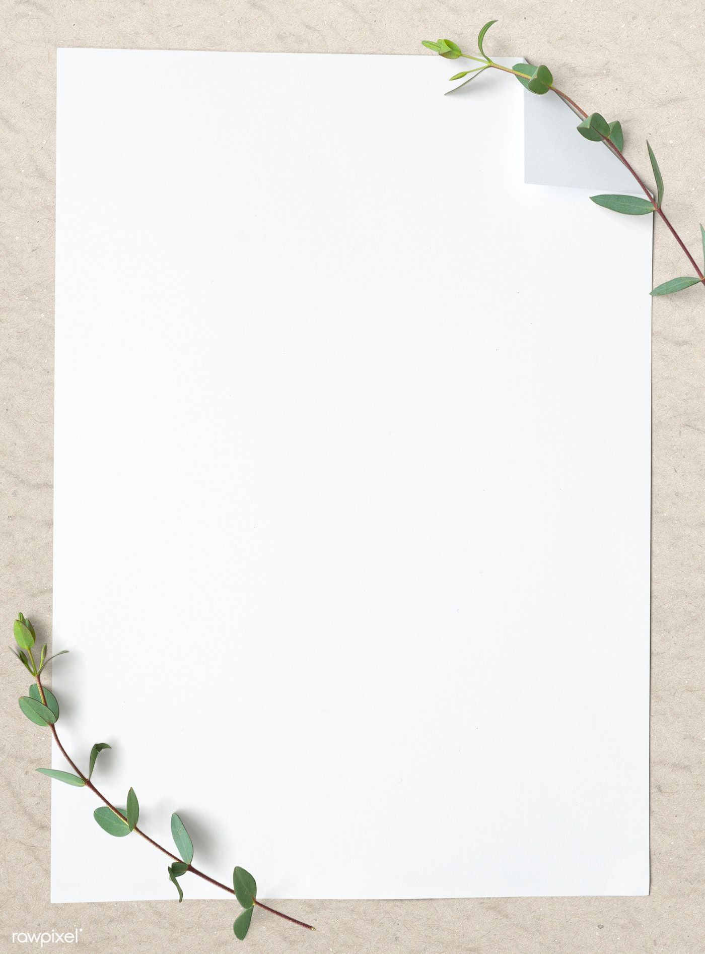 Download Premium Psd Of Blank Plain White Paper Template