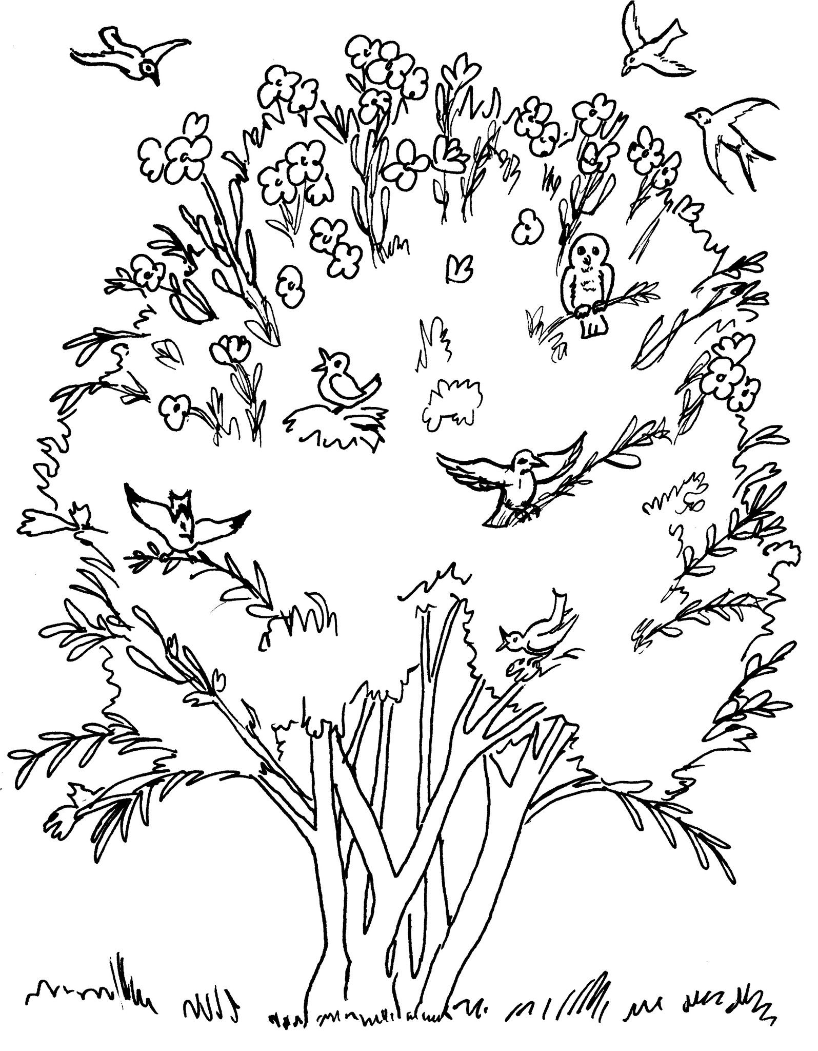 Parable Of The Mustard Seed Coloring Pages Mustard Seed Parable Tree Coloring Page Mustard Seed