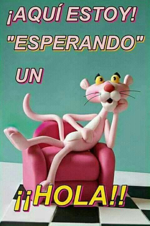 Pin By Diana On Buenos Dias Funny Good Morning Memes Morning Memes Good Day Quotes