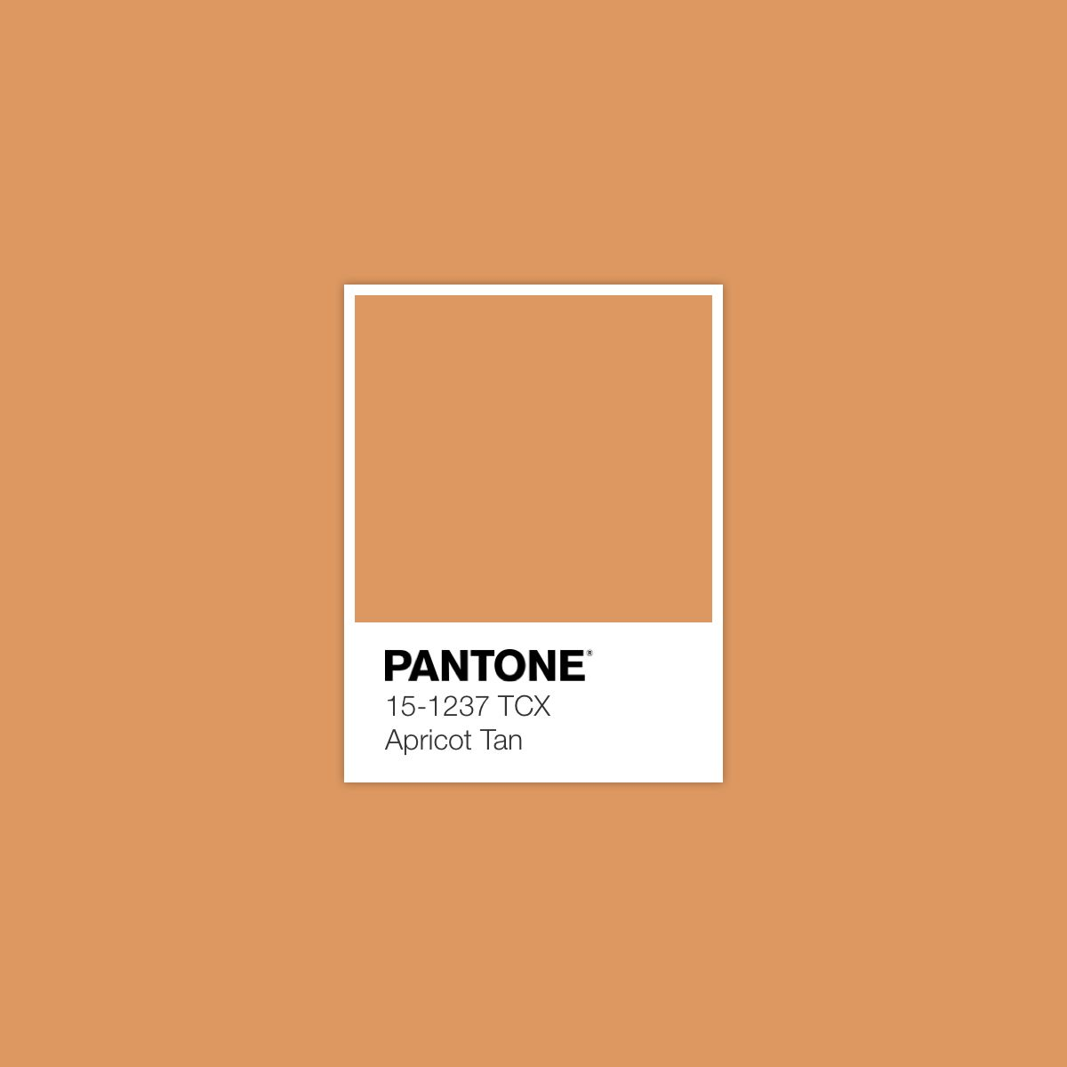 Pantone 2017 Apricot Tan Pantone Color Of The Day May 19 2017