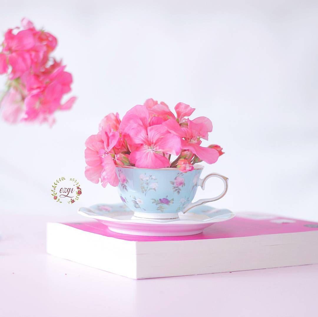 See This Instagram Photo By Biezgi 1 632 Likes Good Morning Flowers Good Morning Greetings Good Morning Arabic