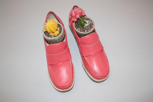 Lambs Ear Shoes