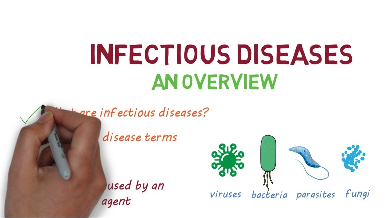 Infectious Diseases - An Introduction in 2020   Disease ...