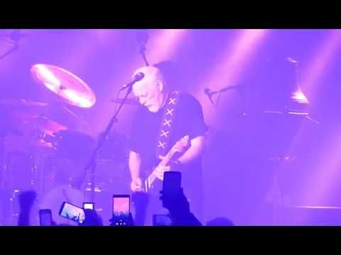 David Gilmour Comfortably Numb Featuring Purple Rain David
