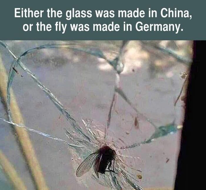 Fly = 1 ; Glass = 0