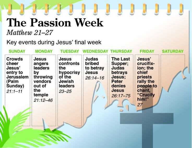 NIV QuickView Bible - Passion Week | Holidays | Pinterest | Bible ...