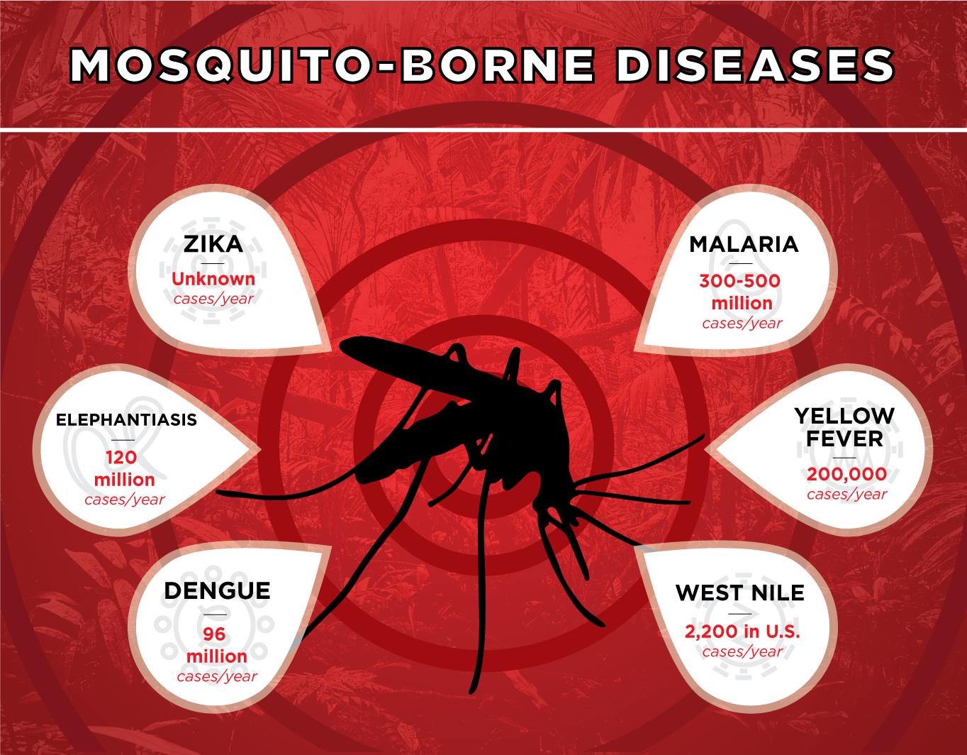 Dengue Fever Infects La Fte De >> Mosquito Borne Disease Zika Unknown Cases Year Malaria 300 500