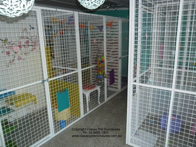 Sample Of A Cattery We Built In 2016 Cat Enclosure Bird Aviary Cat House