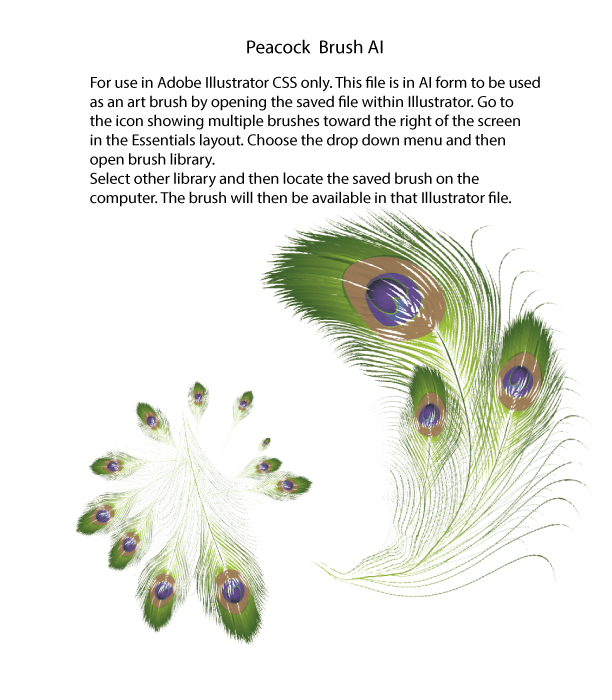 Peacock Brush, AI for Adobe Illustrator CSS and ABR for Photoshop ...