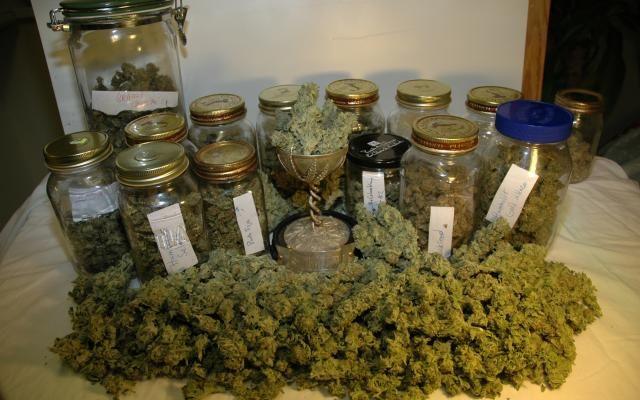Grow Q&A: Storing Marijuana   High Times