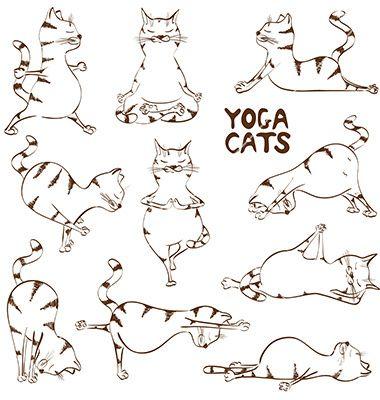 funny sketch cat doing yoga position vector  cat yoga