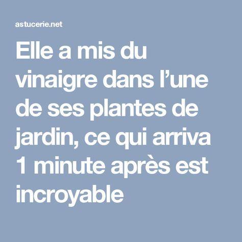 elle a mis du vinaigre dans l une de ses plantes de jardin ce qui arriva 1 minute apr s est. Black Bedroom Furniture Sets. Home Design Ideas