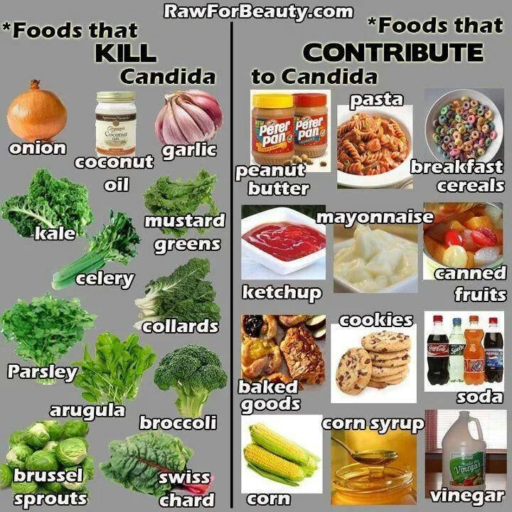 Foods that kill Candida, and foods that contribute to Candid