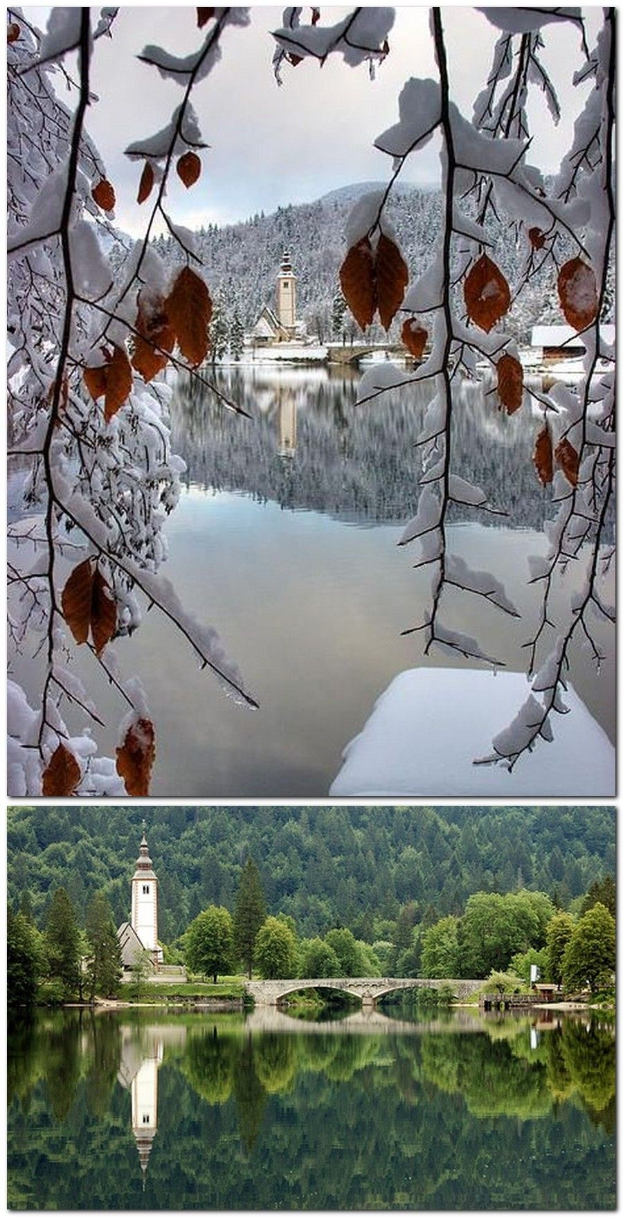 lago bohinj. Eslovenia | ▣ PitoPito donde GO... | Pinterest ...