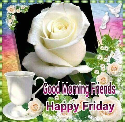 Good Morning Friends Happy Friday Friday Good Morning Friday Quotes