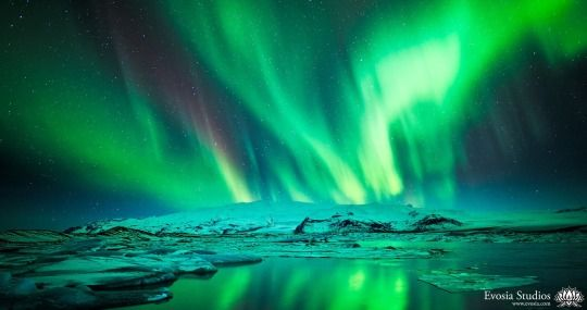 Iceland's Northern Lights by Henry Lee