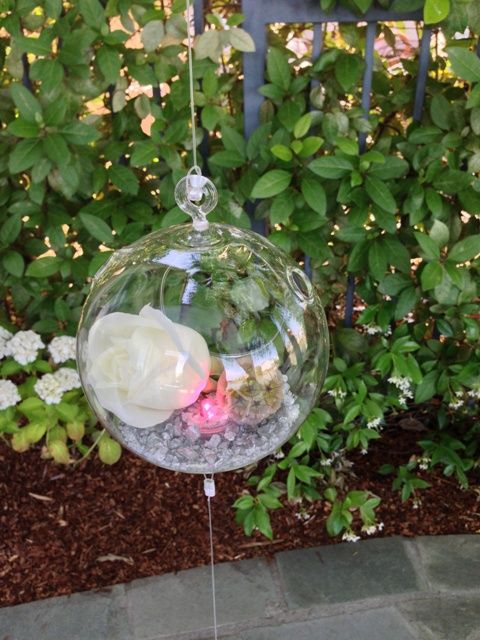 A closeup of a glass terrarium ball with white rose, pink light, scabiosa pod and gray vase filler suspended on fishing line in a steel frame that holds 10 flower balls. Available to rent from Seasonal Celebrations. 3 panels available, 31 balls. http://www.seasonalcelebrations.com