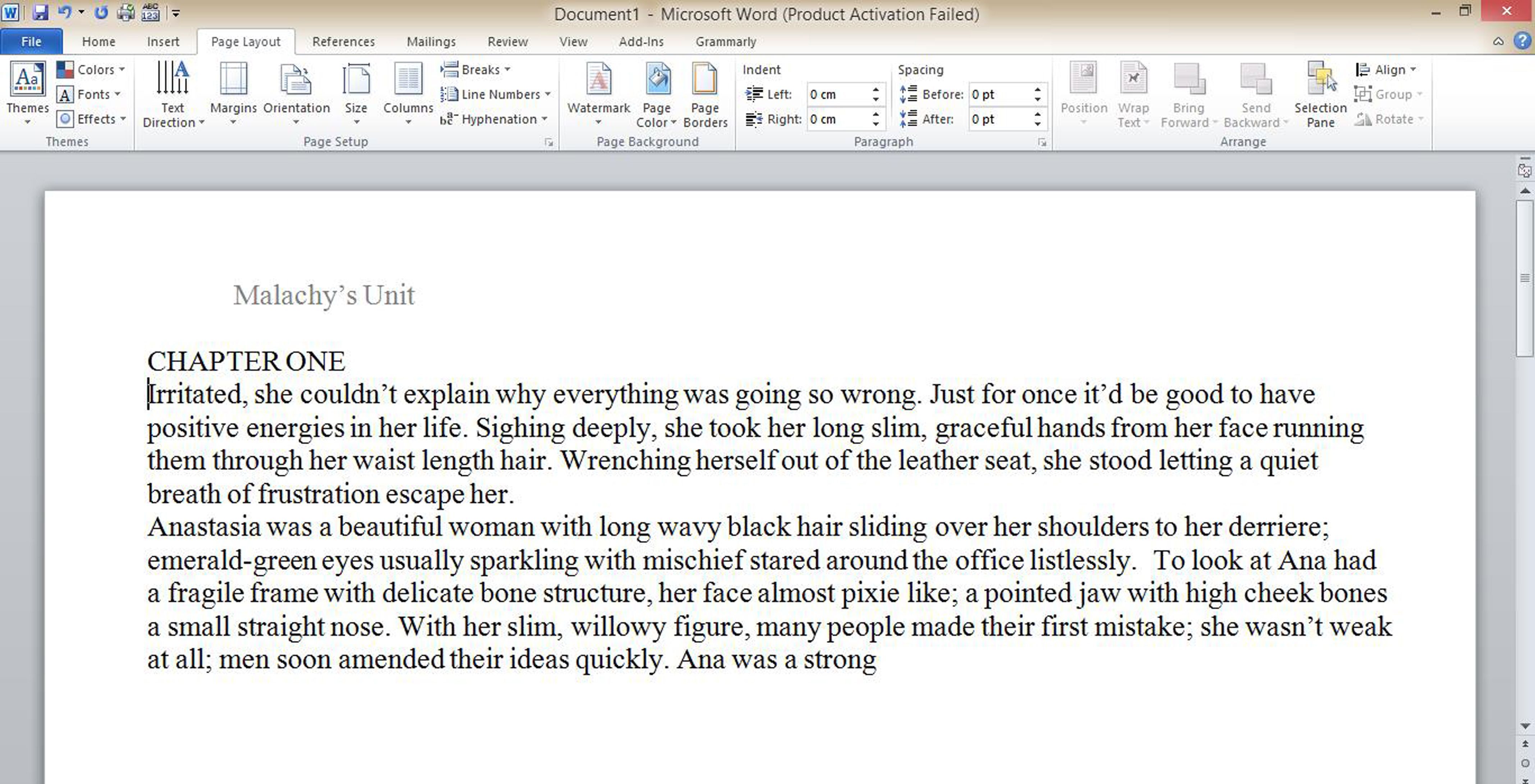 Persuasive essay into the wild