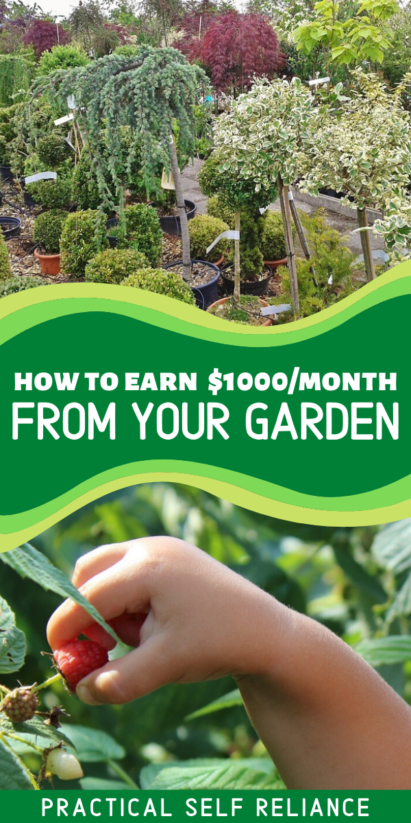 69fd5d1279881f2e2921ae52d56a7878 - How Much Does A Self Employed Gardener Earn