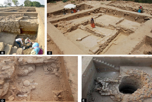 A shift in the cropping pattern to cope with a deteriorating monsoon during the mature phase of the Harappan civilisation could be the first direct evidence of early humans adapting to climate change, a new study suggests...