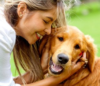 Want a dog who's socially skilled, confident, and well-behaved? Then start training your puppy now!