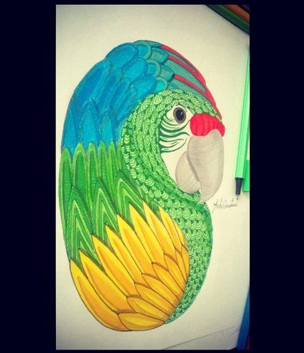 Guacamaya verde lim n instinto de conservaci n por marcela contreras dibujos marcela - Pintura instinto ...