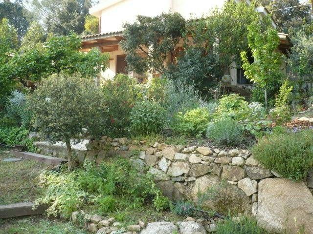 Idee Giardino Mediterraneo Idee Giardino Isola D Elba