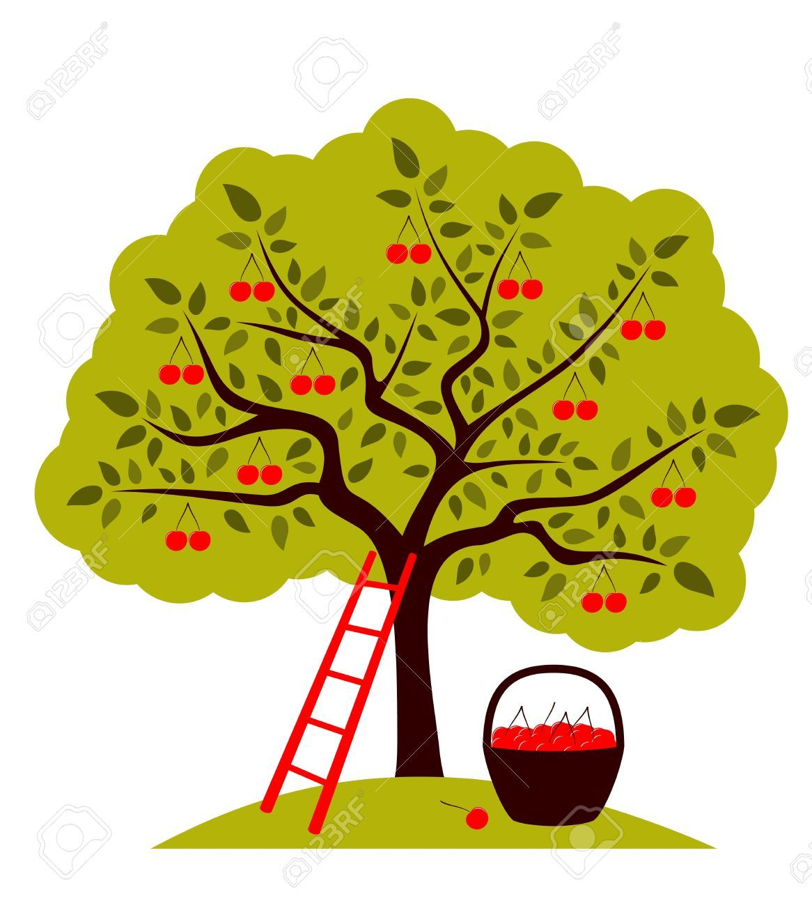 cherry tree drawing - Google Search | Cherry tree art | Pinterest