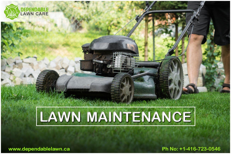 Best lawn maintenance service oakville in 2020 lawn