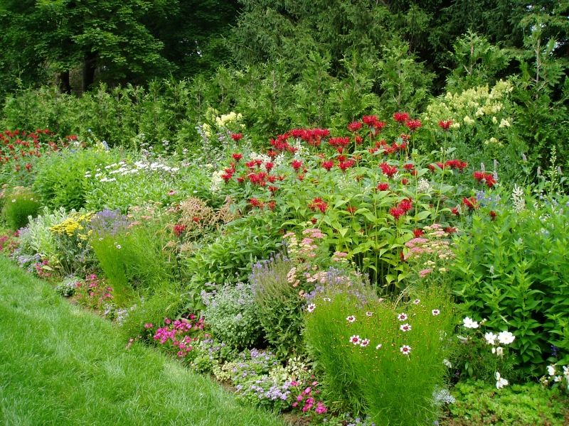 Perennial Garden Ideas | Perennial Flower Garden Designs    ELAOutdoorLiving.com