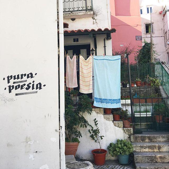 Image result for pura poesia lisboa