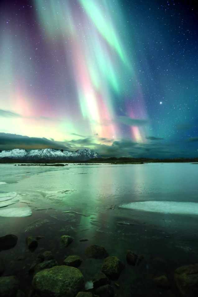 Lofoten Northern Lights - God is playing with his pastels tonight....oooooh how I love those colours !!