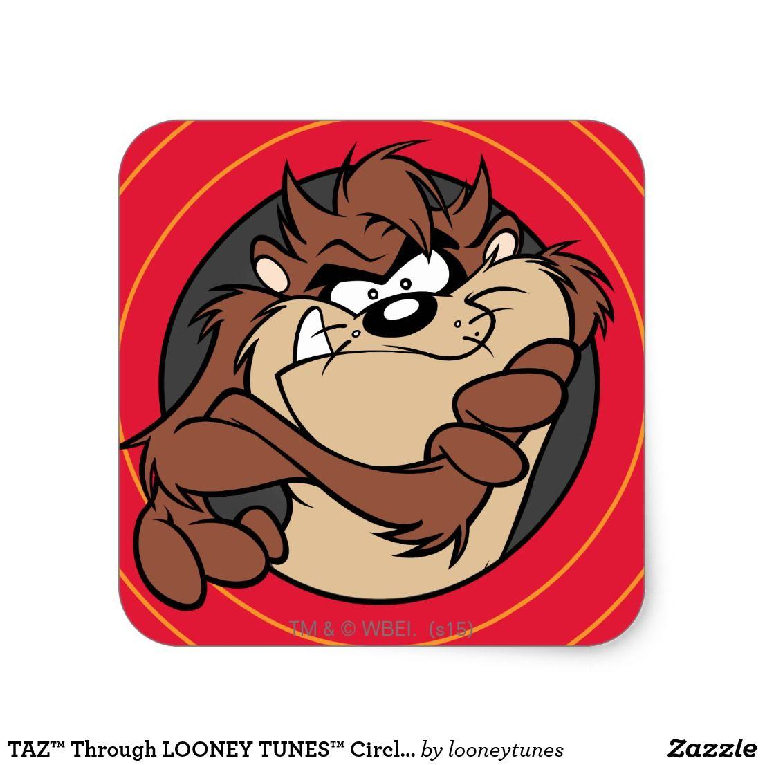 Taz Through Looney Tunes Circles Square Sticker Zazzle Com