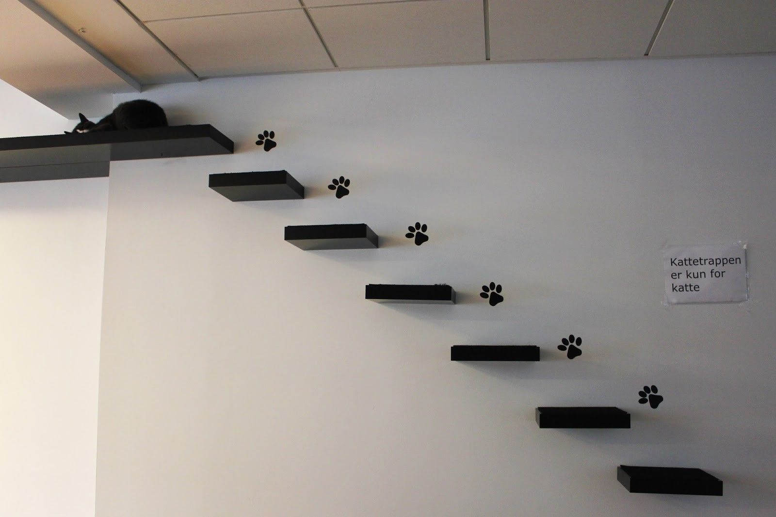 Image result for cat wall steps CatFurniture Cat steps